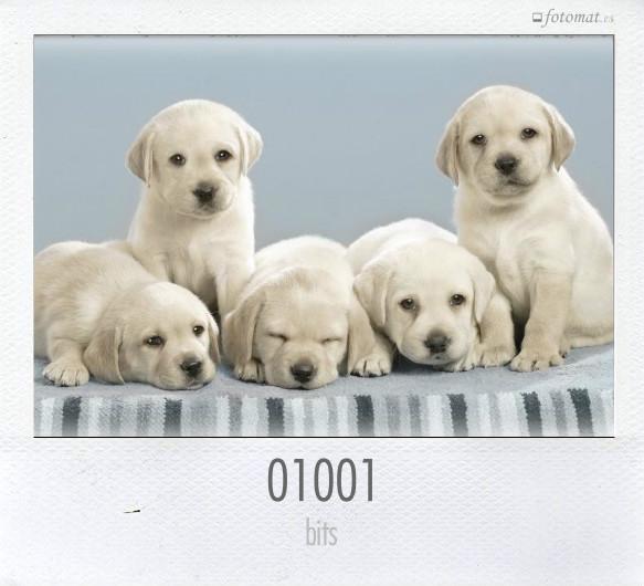 01001
