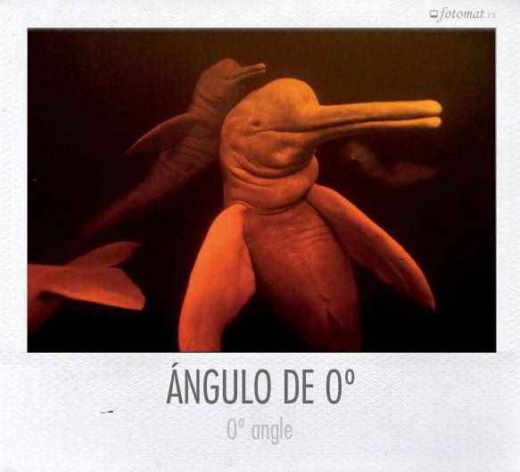 ÁNGULO DE 0º