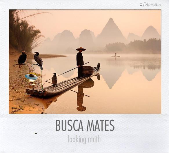 BUSCA MATES