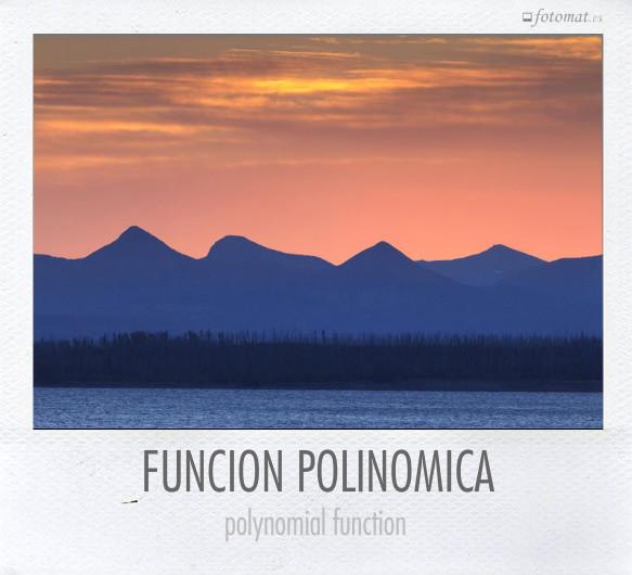 FUNCION POLINOMICA
