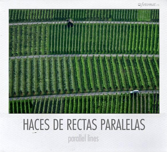 HACES DE RECTAS PARALELAS