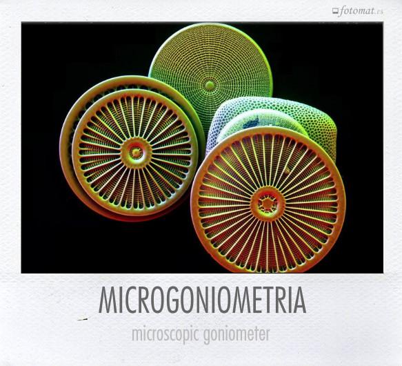 MICROGONIOMETRIA