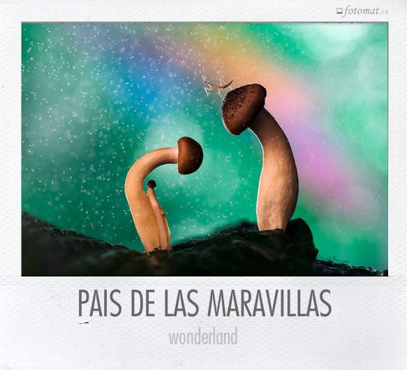 PAÍS DE LAS MARAVILLAS