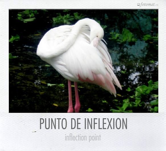 PUNTO DE INFLEXIÓN