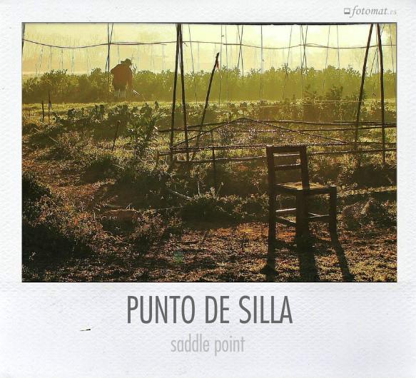 PUNTO DE SILLA