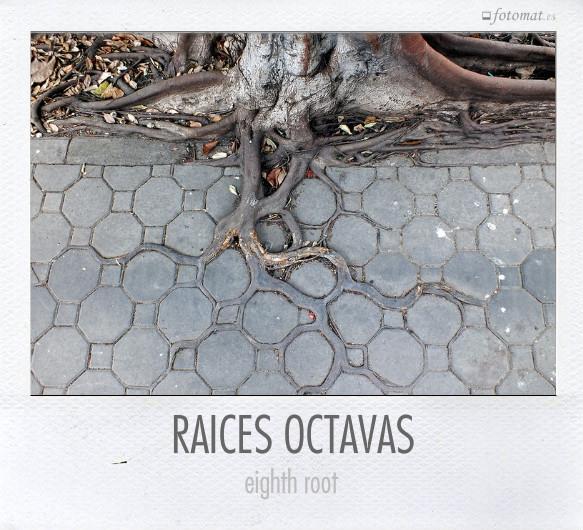 RAICES OCTAVAS