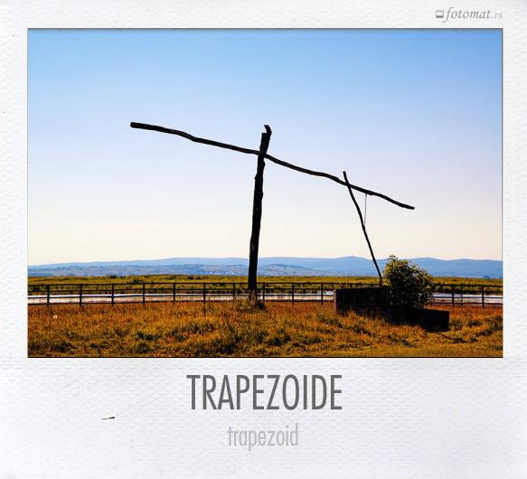 TRAPEZOIDE