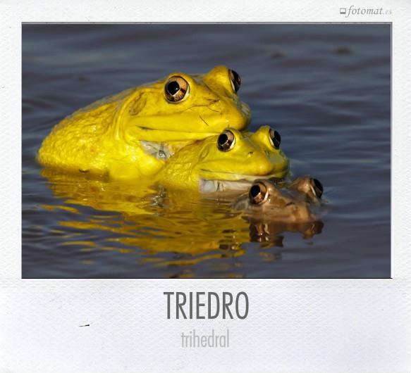 TRIEDRO