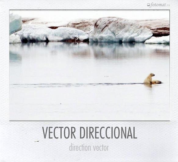 VECTOR DIRECCIONAL