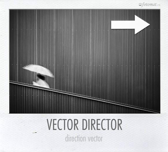 VECTOR DIRECTOR