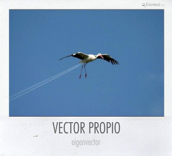 VECTOR PROPIO